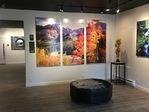 Art salesperson  - Zandee Gallery